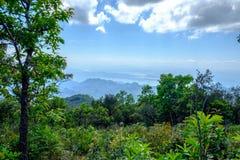 Bella vista dal paesaggio della corrente della valle verde della montagna al ri Immagini Stock Libere da Diritti