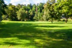 Bella vista dei prati e della foresta un giorno soleggiato defocused Fondo Struttura orizzontale Immagini Stock Libere da Diritti