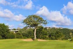 Bella vista del campo verde di golf Fotografia Stock