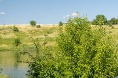 Bella vista del fiume, degli alberi verdi, delle colline e del cielo nuvoloso blu Paesaggio di ESTATE immagine stock libera da diritti