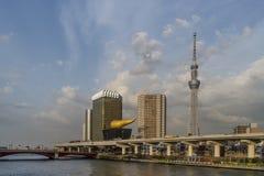 Bella vista del fiume di Sumida nel distretto di Asakusa di Tokyo, Giappone fotografia stock libera da diritti