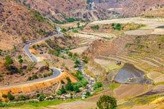 Bella vista del giacimento del riso del terrazzo nel Bhutan Immagini Stock