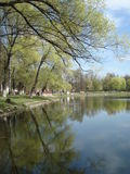 Bella vista del lago in molla in anticipo, sobborgo di Mosca Immagine Stock