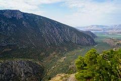 Bella vista del paesaggio della valle del pendio di montagna di Parnassus, oliveti verdi attraverso il mare ionico con il fondo l fotografia stock