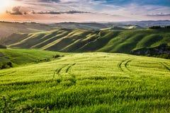 Bella vista del sentiero per pedoni del paese al tramonto in Toscana Fotografie Stock Libere da Diritti