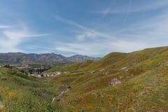 Bella vista del superbloom in una catena montuosa vicino al lago Elsinore fotografia stock
