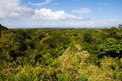 Bella vista della campagna cubana verde Immagine Stock