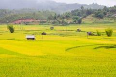 Bella vista della casa nel terrazzo del riso, cang chai, Vietnam della MU immagine stock libera da diritti