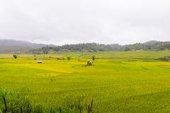 Bella vista della casa nel terrazzo del riso, cang chai, Vietnam della MU immagini stock libere da diritti