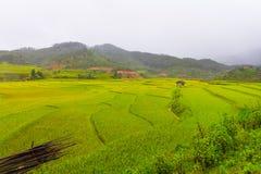 Bella vista della casa nel terrazzo del riso, cang chai, Vietnam della MU fotografia stock