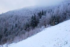 Bella vista della cima nebbiosa delle montagne carpatiche nell'inverno Immagini Stock