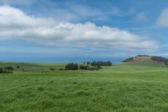 Bella vista della costa di Kohala sulla grande isola delle Hawai presa dall'più alta elevazione Fotografie Stock Libere da Diritti