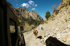 Bella vista della montagna dalla jeep durante il viaggio della strada fotografia stock