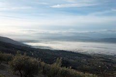 Bella vista della valle dell'Umbria in una mattina di inverno, con gli alberi della copertura della nebbia e case e piante verde  Immagine Stock