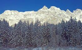 Bella vista delle alpi austriache Fotografia Stock