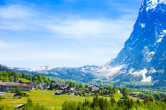 Bella vista delle alpi di Grindelwald in Svizzera Fotografia Stock Libera da Diritti
