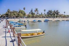 Bella vista delle barche su un pilastro con la palma nel lago Chapala immagini stock libere da diritti
