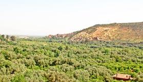 Bella vista delle montagne Fotografia Stock Libera da Diritti