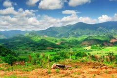 Bella vista delle montagne sceniche e delle risaie verde intenso Immagine Stock Libera da Diritti
