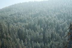 Bella vista delle montagne soleggiate di inverno Fotografie Stock
