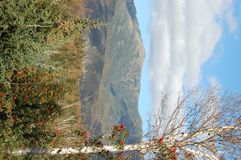 Bella vista di autunno Fotografia Stock