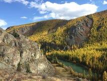 Bella vista di autunno della montagna River Valley Autumn Landscape Fiume di Chuya Montagne di Altai immagini stock libere da diritti