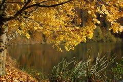 Bella vista di autunno nel lago Lucelle Fotografia Stock Libera da Diritti