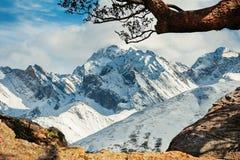 Bella vista di inverno della montagna della neve Immagine Stock