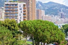 Bella vista di luce del giorno alle costruzioni alte della città, agli alberi verdi e Immagine Stock