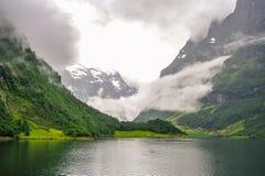 Bella vista di paesaggio e del paesaggio del fiordo in un giorno nuvoloso, Norvegia Fotografia Stock