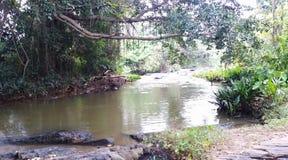 Bella vista di scorrimento dell'acqua del fiume fotografia stock