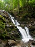 Bella vista di una cascata nelle montagne Immagini Stock