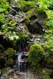 Bella vista di una cascata nelle montagne Immagine Stock