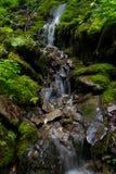 Bella vista di una cascata nelle montagne Fotografie Stock Libere da Diritti