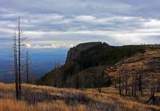 Bella vista di una cresta di montagna e di una foresta bruciata Fotografia Stock