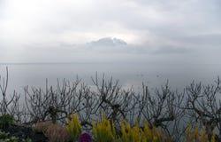Bella vista entro una mattina nebbiosa sul lago Lemano Fotografia Stock Libera da Diritti