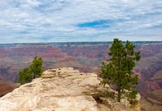 Bella vista in Grand Canyon Fotografie Stock Libere da Diritti