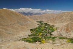 Bella vista scenica della valle dell'alta montagna con foliag luminoso Immagini Stock