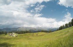 Bella vista su paesaggio dei moutains delle alpi e su una foresta di gree con la a con le casette nella valle di estate nuvolosa Fotografie Stock
