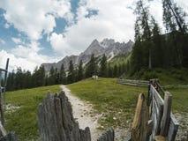 Bella vista su paesaggio dei moutains delle dolomia e su una foresta di gree tramite i recinti di legno Il Tirolo del sud, Italia Fotografia Stock Libera da Diritti