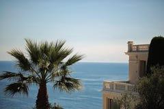 Bella vista sul mare con la palma Fotografia Stock