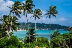 Bella vista sul mare con le palme, Ceylon, unawatuna Fotografie Stock Libere da Diritti