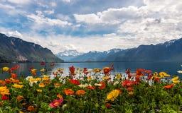 Bella vista sulle montagne e sul lago Lemano delle alpi Fotografia Stock