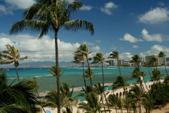 Bella vista tropicale di Honolulu Immagine Stock Libera da Diritti