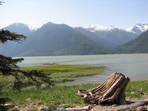 bellacoolafjord Arkivfoto