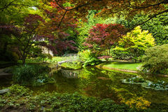 Bellagio city on Lake Como, Italy. Lombardy region. Italian famous landmark, Villa Melzi Park. Botanic Garden plants and trees. Stock Images