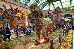 Bellagio Conservatory & Botanical Gardens Royalty Free Stock Photo