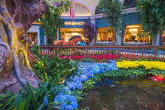 Bellagio Hotel Conservatory & Botanical Gardens Royalty Free Stock Image