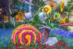 Bellagio Hotel Conservatory & Botanical Gardens Royalty Free Stock Images