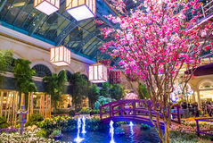 Bellagio Hotel Conservatory & Botanical Gardens Royalty Free Stock Photography